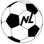Торговая компания «NL international»