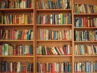 «Черногубовская сельская библиотека»