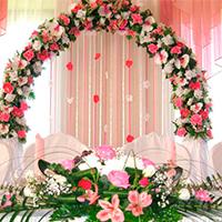 Цветочная база «Флория» на Можайского