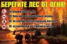 «Тверское лесничество Тверской области»