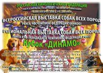 Кинологический клуб «Динамо»