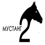 Швейная фабрика ООО «Мустанг»