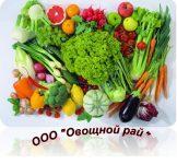 Оптовая компания «Овощной рай»