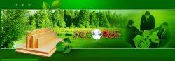 Деревообрабатывающая компания ООО «Лесоруб»
