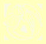 Медицинская автономная некоммерческая организация «Тверской хоспис Анастасия»