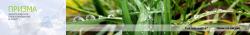 Экологическая фирма «Призма»