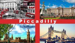 Центр иностранных языков «Piccadilly»